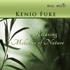 Couverture de l'album Relaxing Melodies Of Nature
