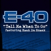 Couverture de l'album Tell Me When To Go (feat. Keak Da Sneak) - Single