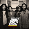Cover of the album The Best of Ziggy Marley & the Melody Makers