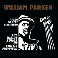 Couverture du titre I Plan to Stay a Believer: The Inside Songs of Curtis Mayfield