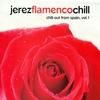 Couverture de l'album Jerez Flamenco Chill. Chill-Out From Spain, Vol. 1