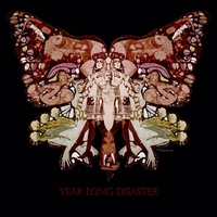 Cover of the track Year Long Disaster