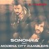 Cover of the album Il viaggio (feat. Modena City Ramblers) - Single