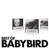 Couverture de l'album Best of Babybird