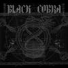 Couverture de l'album Black Cobra - EP