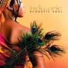 Couverture de l'album Acoustic Soul