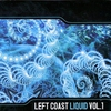 Cover of the album Left Coast Liquid, Volume 1