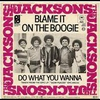 Cover of the track Blame It on the Boogie