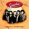Couverture de l'album Burnin' Ambition