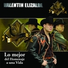 Couverture de l'album Lo Mejor de Homenaje a una Vída