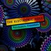 Couverture de l'album The Electronic Hole