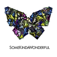 Cover of the track SomeKindaWonderful