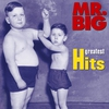 Cover of the album Mr. Big: Greatest Hits (Remastered)