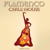 Cover of the album Flamenco - Chill & House Compiled By DJ Puku