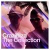 Couverture de l'album Crazibiza - The Collection, Vol.1