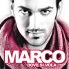 Cover of the album Dove si vola