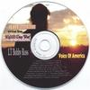 Couverture de l'album LT Bobby Ross - Voice of America
