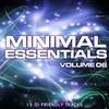 Couverture de l'album Minimal Essentials Vol. 06