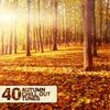 Couverture de l'album 40 Autumn Chill Out Tunes