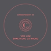 Couverture de l'album Something Is Wrong - EP