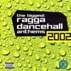 Couverture de l'album The Biggest Ragga Dancehall Anthems '99