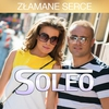 Cover of the track Zlamane Serce