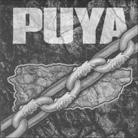 Cover of the track Puya