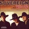 Couverture de l'album Wild One