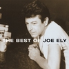 Couverture de l'album The Best of Joe Ely