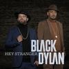 Couverture de l'album Hey Stranger (feat. Wafande & Nuplex)