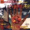 Couverture de l'album SL-remixes