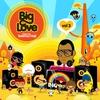 Couverture de l'album Big Love, Vol. 3 Mixed by Seamus Haji