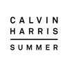 Couverture du titre Summer (R3hab rmx)