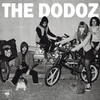 Cover of the track Dum Dum