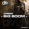 Cover of the track Big Boom