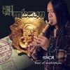 Cover of the album Sol