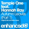 Cover of the track Autumn Leaves (original mix)