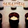 Couverture de l'album Serenity: The Best of David Hicken