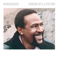 Cover of the track Dream of a Lifetime