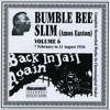 Couverture de l'album Bumble Bee Slim Vol. 7 1936-1937