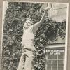 Couverture de l'album Encyclopedia of Arto