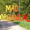 Couverture de l'album Mad Organical - EP