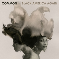Cover of the track Black America Again