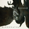 Cover of the album Bloodwater
