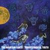 Couverture de l'album Transcendental Youth