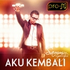 Couverture de l'album Aku Kembali