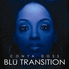 Cover of the album Blu Transition