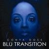 Couverture de l'album Blu Transition