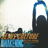 Cover of the track Awakening: Live From Chicago
