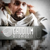 Couverture de l'album Gaudium - Best of My Sets, Vol. 10